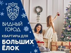 Новогодний SALE в ЖК Видный Город Скидки до 18%!